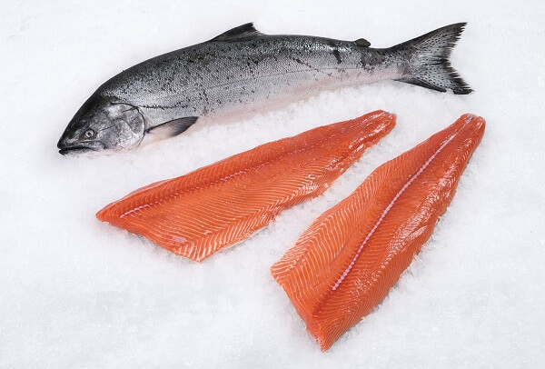 Wild Salmon- Best Testosterone Boosting Foods
