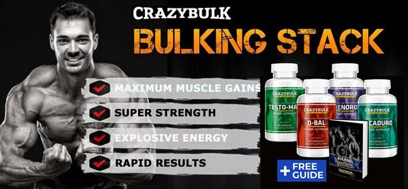 Bulking Stack Supplement