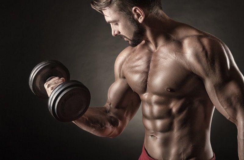 Workout-Biceps